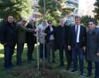 Δενδροφύτευση του Δήμου Πειραιά στους κήπους της Τερψιθέας