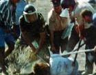 Ο δολοφόνος του Τάσου Ισαάκ εξελέγη «βουλευτής» του ψευδοκράτους