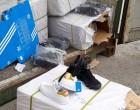 «Σαν… σμιθ»: Δείτε φωτογραφίες από τα 28.000 παπούτσια και ρούχα-μαϊμού που κατασχέθηκαν