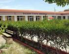 «Η Παιδική Στέγη Κρώσφηλδ» ξανανοίγει τις πόρτες της στους μικρούς δημότες