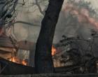 Εθνική Τραγωδία: Στους 50 Έως Τώρα Οι Νεκροί – Ξεπερνούν Τους 150 Οι Τραυματίες
