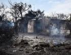 Στέφανος Μίλεσης: Από όσο γνωρίζω δεν υπάρχει νόμος στην Ελλάδα που να τιμωρεί την αυθαιρεσία της δόμησης με θάνατο δια πυρκαγιάς!