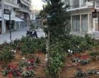 Ε' Δημοτική Κοινότητα -Το προβληματικό σιντριβάνι μετατράπηκε σε όμορφο κηπάριο (φωτο)