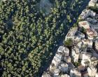 ΑΠΟΦΑΣΗ ΔΑΣΑΡΧΕΙΟΥ ΠΕΙΡΑΙΑ: Aπαγορεύεται για 10 χρόνια σε ολόκληρη την περιοχή η υλοτομία, κλάδευση ή εκρίζωση κάθε δασικού δέντρου, θάμνου, φρύγανου και χόρτου