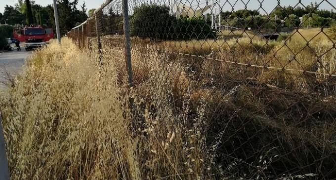 Δήμος Ιλίου:Ανίκανος ο Φορέας Διαχείρισης να προστατέψει το Πάρκο Τρίτση