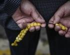 Συντάξεις: 8 κατηγορίες ασφαλισμένων με προσαύξηση από τον νόμο Κατρούγκαλου