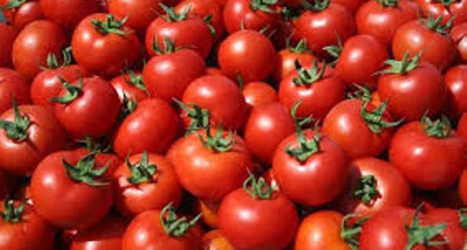 Κατάσχεση 1,9 τόνων ντομάταςμε υπολείμματα φυτοφαρμάκων στον Πειραιά