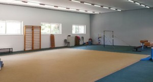 gymnasthrio1