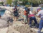 Ολοκλήρωση δράσης θαλάσσιων καθαρισμών