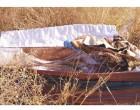 «ΦΑΚΕΛΟΣ» ΝΕΚΡΟΤΑΦΕΙΑ Ζητούνται παρεμβάσεις – Δείτε εικόνες που έστειλε αναγνώστρια της ΚΟΙΝΩΝΙΚΗΣ από το νεκροταφείο του Σχιστού