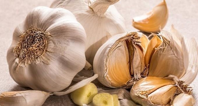 Κορονοϊός: Εφερε χαμόγελα στους… παραγωγούς σκόρδων!