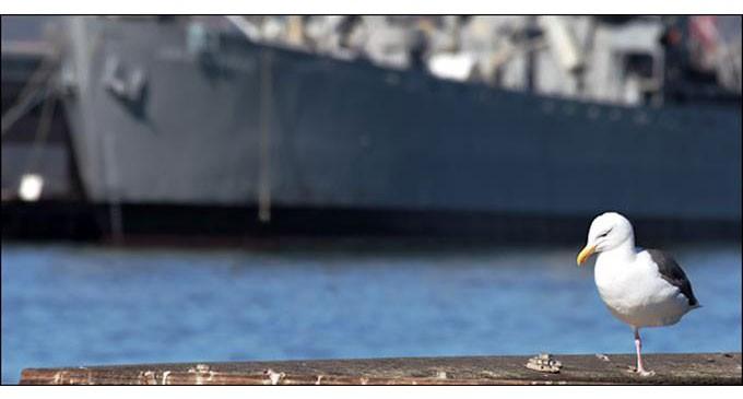 Επιβάλλεται να προστατευθούν από την Πολιτεία οι ναυτικοί! ΑΝΑΚΟΙΝΩΣΗ ΤΩΝ 9 ΣΩΜΑΤΕΙΩΝ ΓΙΑ ΤΙΣ ΣΥΝΕΠΕΙΕΣ ΤΟΥ ΚΟΡΩΝΟΪΟΥ