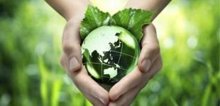 Συνεργασία ΠΕΣΥΔΑΠ – ΣΕΦ με κοινή δράση για την Παγκόσμια Ημέρα Περιβάλλοντος
