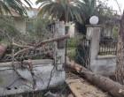 Λέσβος: Εκτεταμένες ζημιές στο λεκανοπέδιο Καλλονής από ανεμοστρόβιλο και σφοδρή κακοκαιρία