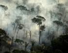 «Χαμένη ευκαιρία» για το κλίμα η εμπορική συμφωνία ΕΕ- Mercosur