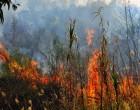 Σρι Λάνκα: Το Πολεμικό Ναυτικό κατέσβεσε νέα πυρκαγιά στο πετρελαιοφόρο New Diamond