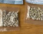 Στέλνουν πακέτα με περίεργους σπόρους σε πολίτες – Τι φοβούνται οι αρχές