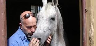Έλληνας κτηνίατρος που φροντίζει τα άλογα του Σουλτάνου του Ομάν