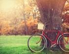 Πόσο καλό μας κάνει το ποδήλατο και πώς να διαλέξουμε το καλύτερο;