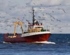 Ν. Σαντορινιός: Η πλειονότητα των ψαράδων εξαιρείται από τις ευρωπαϊκές χρηματοδοτήσεις