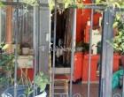 Με μαντήλι δεμένο στο λαιμό βρέθηκε η 79χρονη που δολοφονήθηκε στα Χανιά
