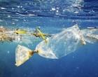 Η ΕΕ για την ελάττωση των θαλάσσιων απορριμμάτων