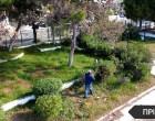 Η παλιά παιδική χαρά του Αγ. Νικολάου μεταμορφώθηκε σε ένα όμορφο πάρκο από τον Δήμο Σαλαμίνας