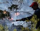 Πολύ υψηλός κίνδυνος πυρκαγιάς για 4 περιφέρειες – Ο χάρτης Πολιτικής Προστασίας