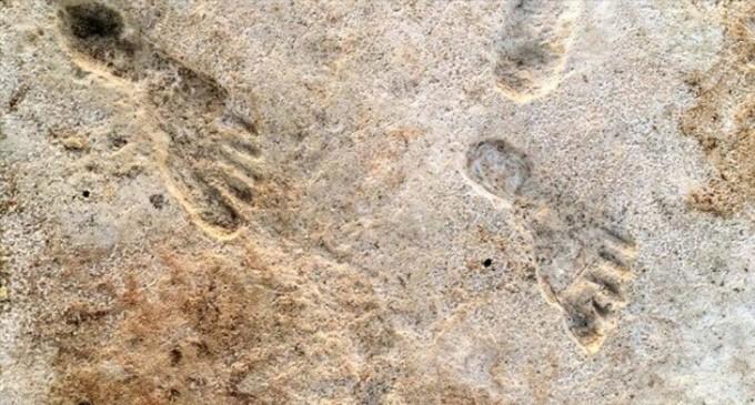 Βρέθηκαν οι αρχαιότερες πατημασιές ανθρώπων στην Αμερική ηλικίας 23.000 ετών