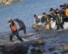 Μυτιλήνη: Συνολικά 201 πρόσφυγες και μετανάστες έφτασαν στη Λέσβο εδώ και 24 ώρες