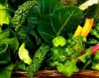 Τα πράσινα φυλλώδη λαχανικά υπόσχονται γερό μυαλό