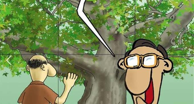 Το «καυστικό» σκίτσο του Αρκά για την ανάκαμψη: Χαιρέτα μου τον πλάτανο