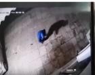Ληστής… σφαιροβόλος εισβάλει σε κατάστημα στη Νίκαια (βίντεο)