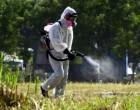 Συνεχίζονται οι ψεκασμοί για τα κουνούπια