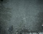 Πάρνηθα «εν λευκώ»: Εντυπωσιακές εικόνες από το χιονισμένο δάσος
