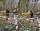 Έβρος: Επίδειξη… πολεμικών τεχνών από μετανάστη πίσω από τον φράχτη (βίντεο)