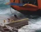 Σίκινος: Η μάχη του πλοίου στα κύματα για να δέσει στο λιμάνι! Εικόνες που καθηλώνουν (Βίντεο)