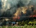Ανεξέλεγκτη η φωτιά στις Κεχριές: Οι φλόγες έφτασαν σε σπίτι – Ενισχύονται οι δυνάμεις της Πυροσβεστικής
