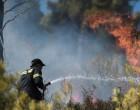 Πυρκαγιά στον Νέο Βουτζά-Δεν υπάρχει κίνδυνος για κατοικημένη περιοχή