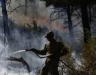 Πυρκαγιές σε Καλύβια και Νέα Μάκρη