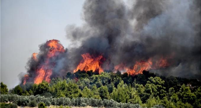 Πυρκαγιά σε δασική έκταση στη Νέα Μάκρη