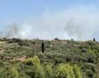 Κεφαλονιά: Πυρκαγιά σε δασική έκταση στην περιοχή Μύρτος