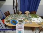 Σύλληψη για κάνναβη και αρχαία στην Αίγινα