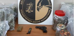 Συλλήψεις διακινητών ναρκωτικών σε Νίκαια και Κερατσίνι – Κατασχέθηκαν πάνω από δέκα κιλά υδροπονικής κάνναβης