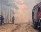 Φωτιά στο Σχίνο Κορινθίας: Δραματικές εικόνες – Εκκενώνονται ακόμη τρεις οικισμοί