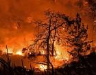 Φωτιά στον Σχίνο Κορινθίας: Μάχη με τις φλόγες – Εκκενώθηκαν έξι οικισμοί και δύο Μονές