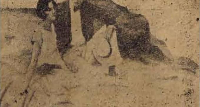 «Η ξανθούλα της Φρεαττύδας». Ένα ρομάντζο που κάποτε έγινε ανάρπαστο – Γράφει ο Στέφανος Μίλεσης