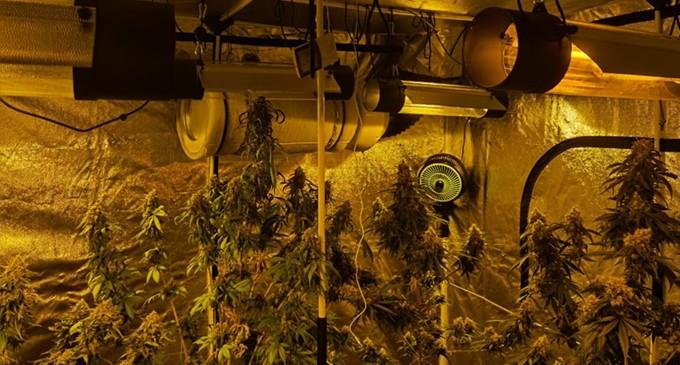 Εξαρθρώθηκε εγκληματική οργάνωση διακίνησης ναρκωτικών σε Αττική και Δωδεκάνησα