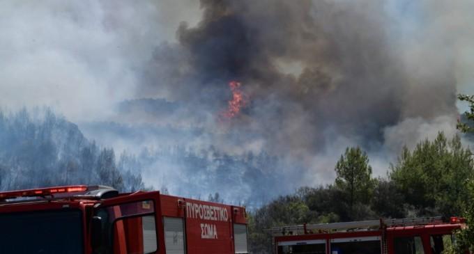 Φωτιά στις Γουβές Ευβοίας – Συναγερμός στην Πυροσβεστική