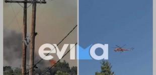 Φωτιά σε Εύβοια και Επίδαυρο – Κινδυνεύουν σπίτια, κραυγή αγωνίας από τον δήμαρχο Μαντουδίου